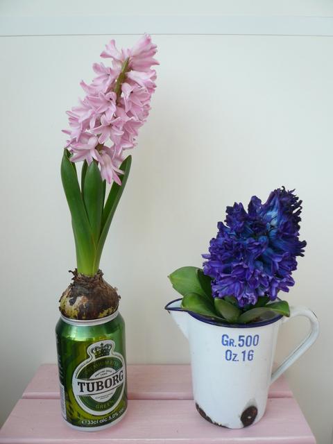 春の香り_e0237625_21393977.jpg