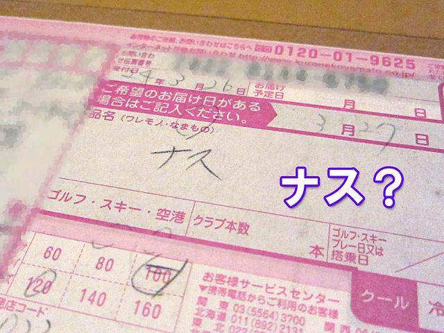 111本ナスちゃん大行進_c0062832_573347.jpg