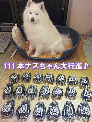 111本ナスちゃん大行進_c0062832_59945.jpg