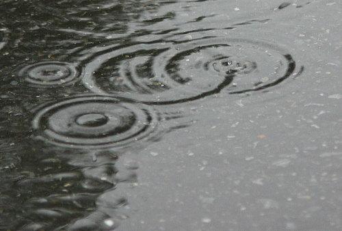 Rain Rain Rain_c0113733_2173887.jpg