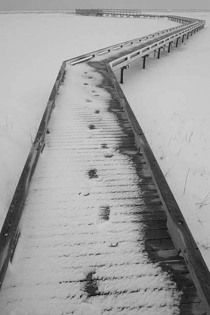 凍る道 by  FUJIFILM X-Pro1_f0050534_912322.jpg