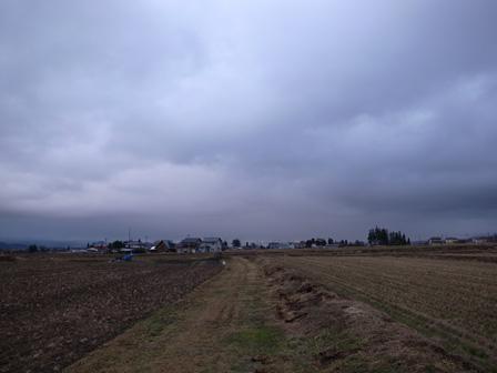 雨の日の静寂_a0014840_21293346.jpg