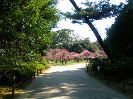 香川の旅 3_a0099744_10173414.jpg