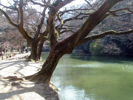 香川の旅 3_a0099744_1018826.jpg