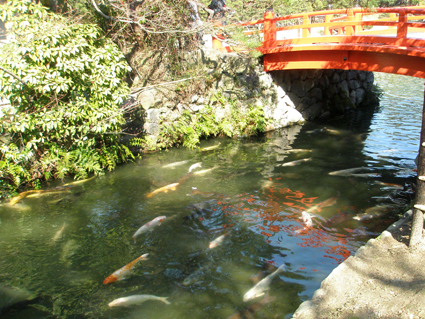 香川の旅 3_a0099744_10193410.jpg