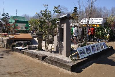 熊本の旅-植木市と黒川温泉-_a0134952_15205873.jpg