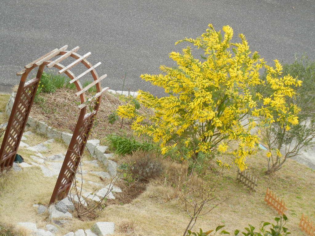 2012年3月31日(土)寝不足と突風と悪天候!_f0060461_10202946.jpg