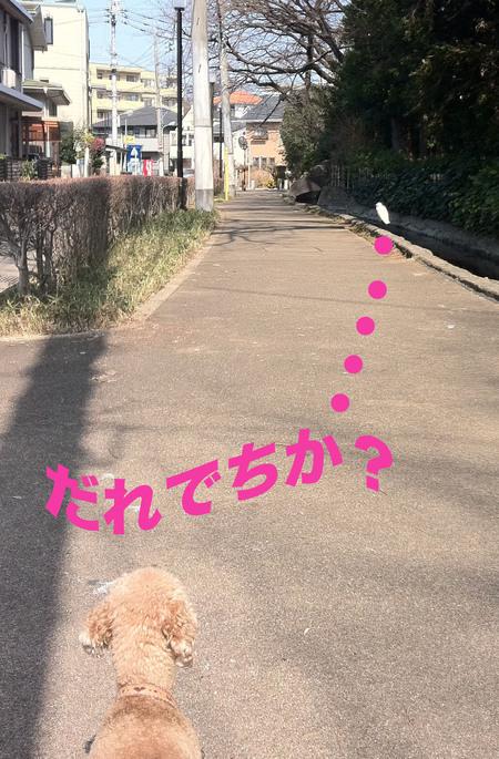 a0109467_1415554.jpg