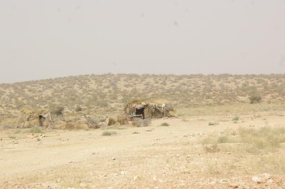 PJAM2012#17 砂漠の生活_a0186568_23403777.jpg