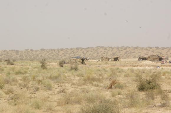 PJAM2012#17 砂漠の生活_a0186568_23425039.jpg