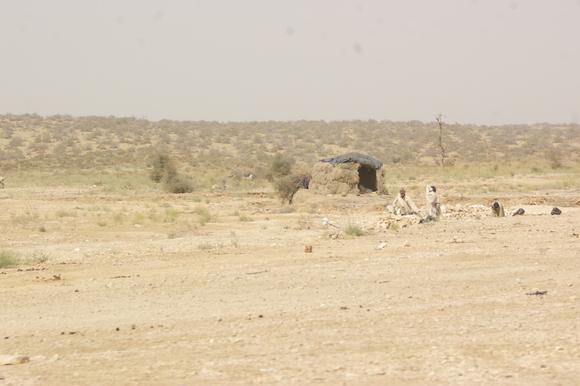 PJAM2012#17 砂漠の生活_a0186568_23523244.jpg
