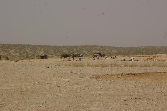 PJAM2012#17 砂漠の生活_a0186568_2354120.jpg