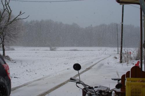 ふたたび積雪_c0110869_16104855.jpg