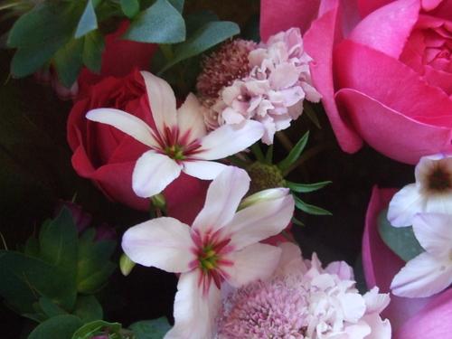 オークリーフ(バラ・イブピアッチェの花束)_f0049672_16405679.jpg
