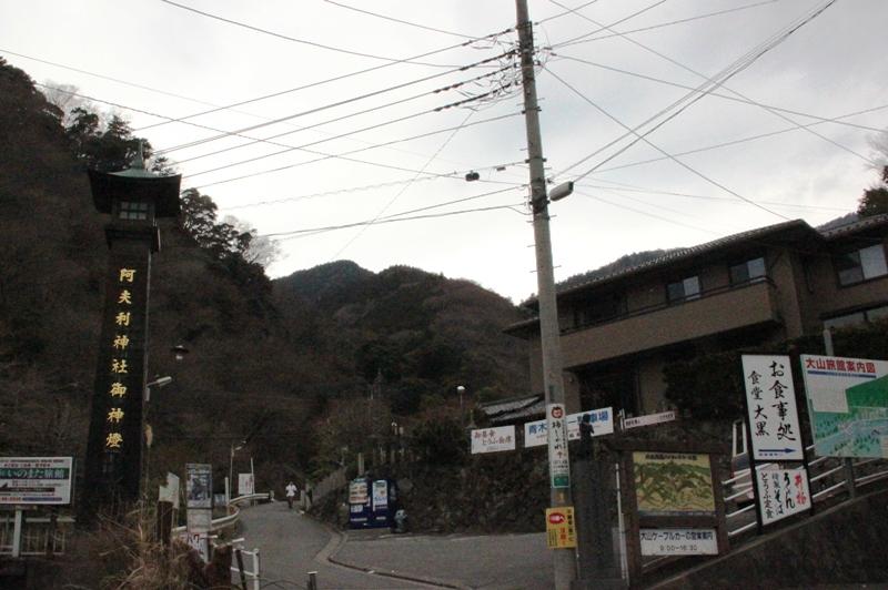丹沢入門 大山 ①_a0127090_16243257.jpg