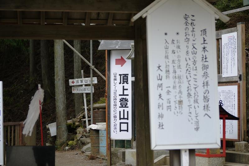 丹沢入門 大山 ①_a0127090_16542115.jpg