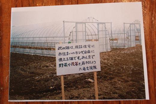 宮城県と福島県からの手紙_d0063218_1121079.jpg