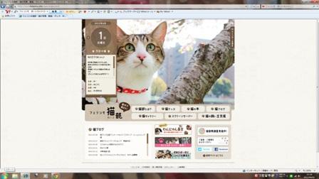 フェリシモ猫部今日の猫 ぽー編。_a0143140_22124139.jpg