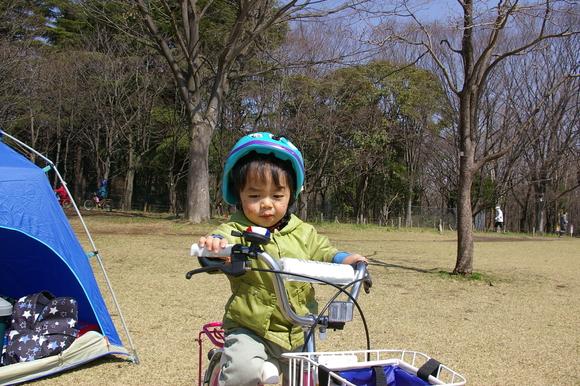 小金井公園、桜はまだまだ_a0186568_218583.jpg