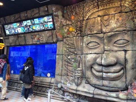 ドン・キホーテ梅田店の水槽を見てきたよ._b0151584_2351106.jpg