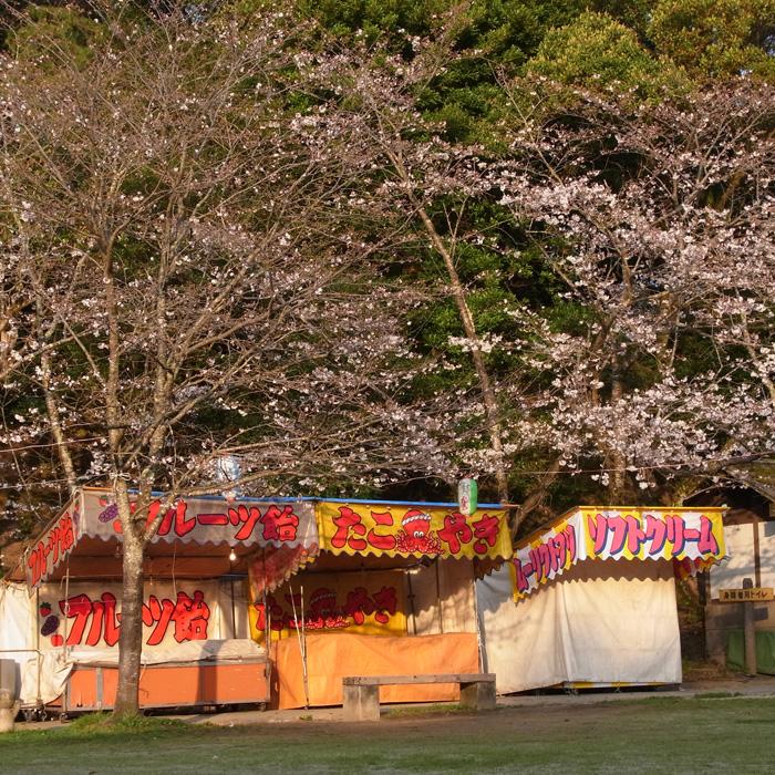 春らんまん♪ by CX5 & GRD3_c0049299_221618100.jpg