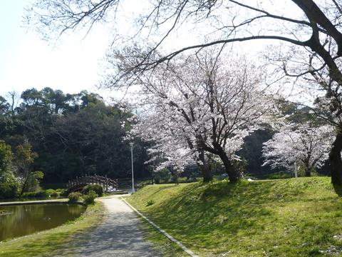 水の科学館と桜(^^)_b0228113_106339.jpg