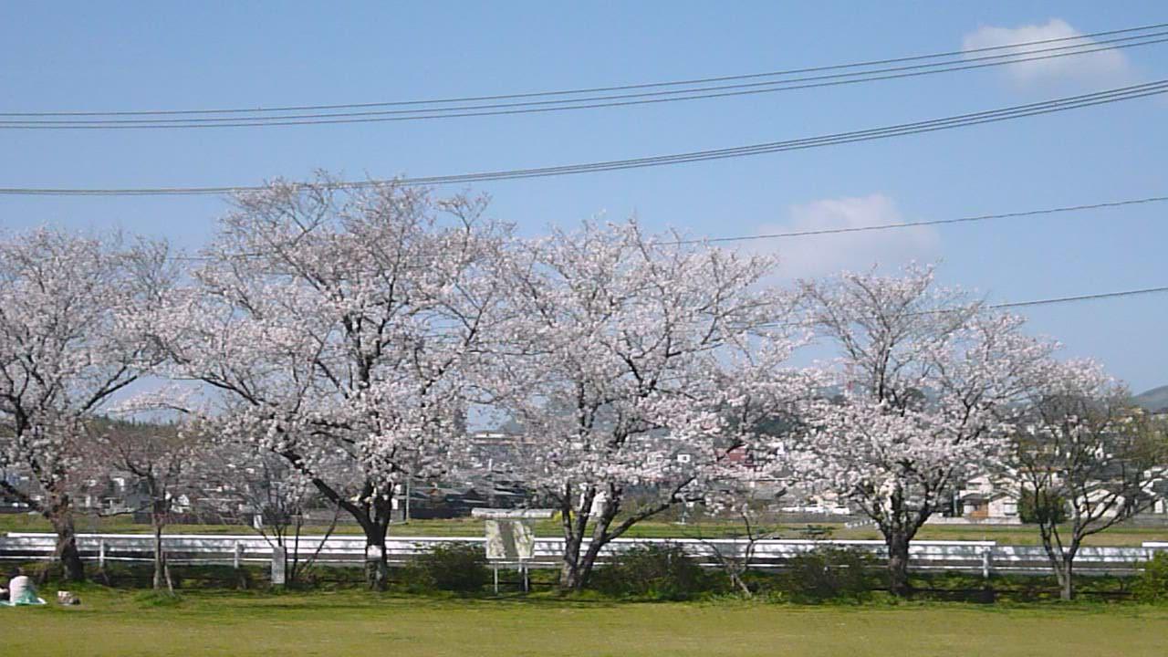 水の科学館と桜(^^)_b0228113_1084665.jpg