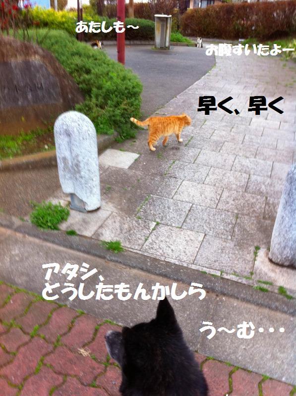 a0147921_2032179.jpg