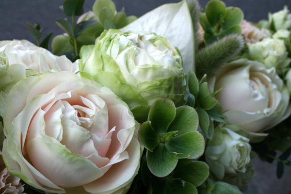 最近のお花たち・・・_a0118355_18104862.jpg