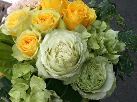 最近のお花たち・・・_a0118355_1811235.jpg