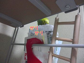 f0196665_2273951.jpg