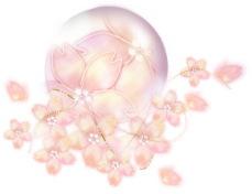 春の買取強化キャンペーン期間延長!!(~4月30日まで)_b0101975_14522987.jpg
