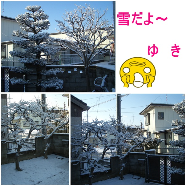 b0124693_2016151.jpg