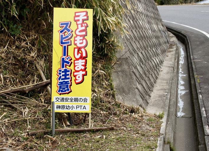 昨日のお詫びと糸桜_b0145296_7165381.jpg