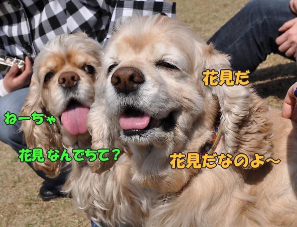 b0067012_20331939.jpg