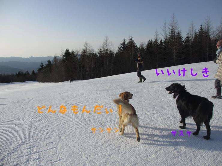 c0237824_1038444.jpg
