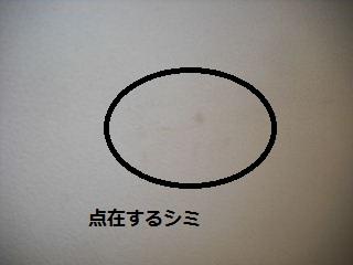 f0031037_21151257.jpg