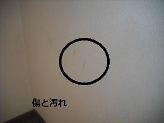 f0031037_2116198.jpg