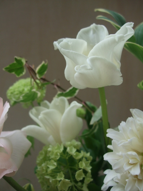 オークリーフ(チューリップと春の球根切り花のアレンジメント)_f0049672_13302025.jpg
