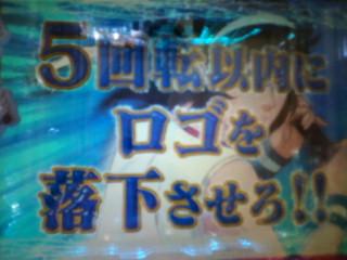 b0020017_1623074.jpg
