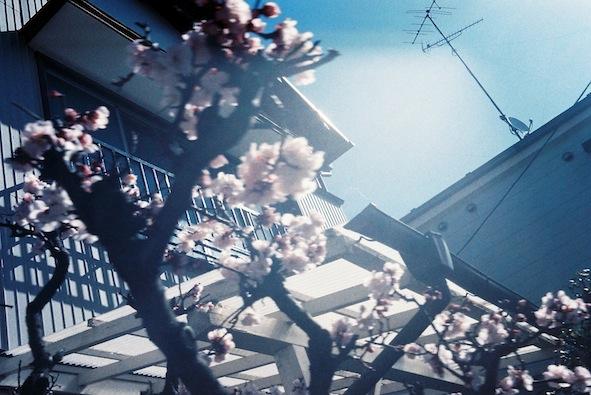 f0046982_201025.jpg