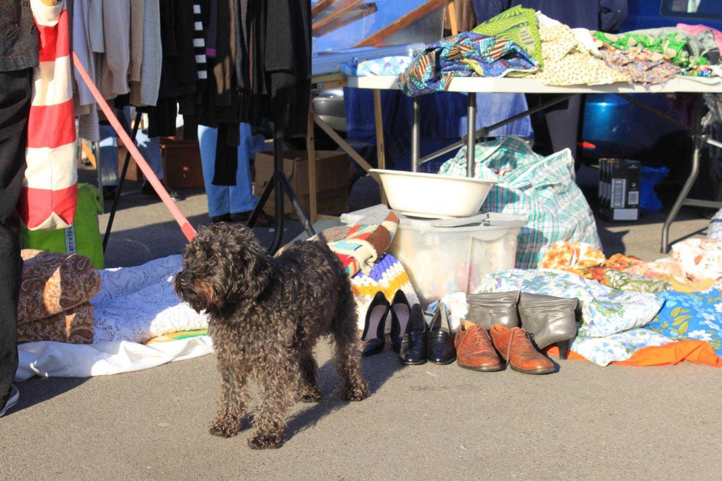 Kempton Antique Market_a0137487_1856193.jpg