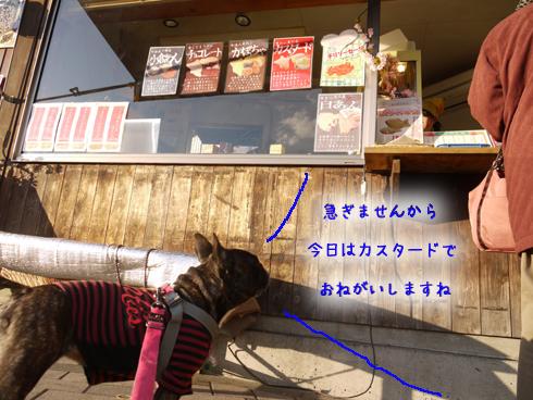 b0134197_15105532.jpg