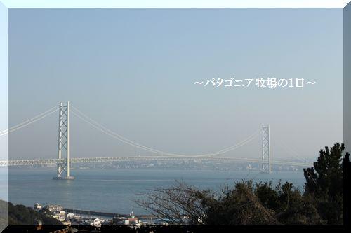 f0197317_1563646.jpg