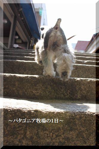 f0197317_16201525.jpg
