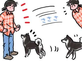 犬道!! シバツレ流8_b0057675_21304252.jpg