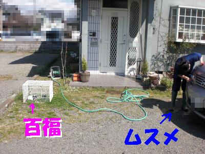 c0241498_23261711.jpg