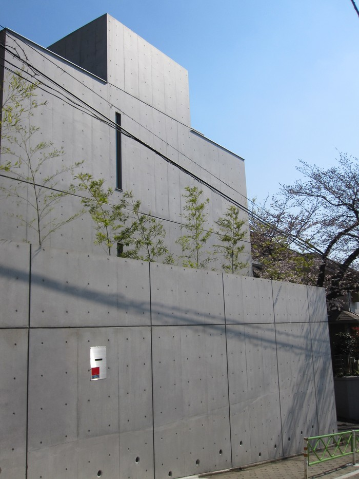 桜の季節_b0227217_13559100.jpg