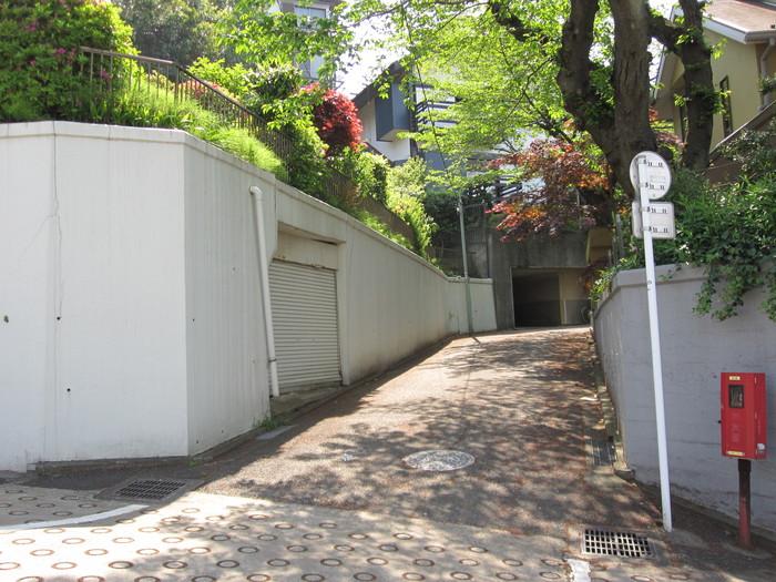 桜の季節_b0227217_14104225.jpg