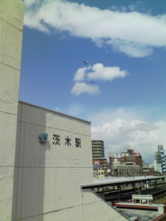 From 茨木CITY!!!_a0168922_1712769.jpg